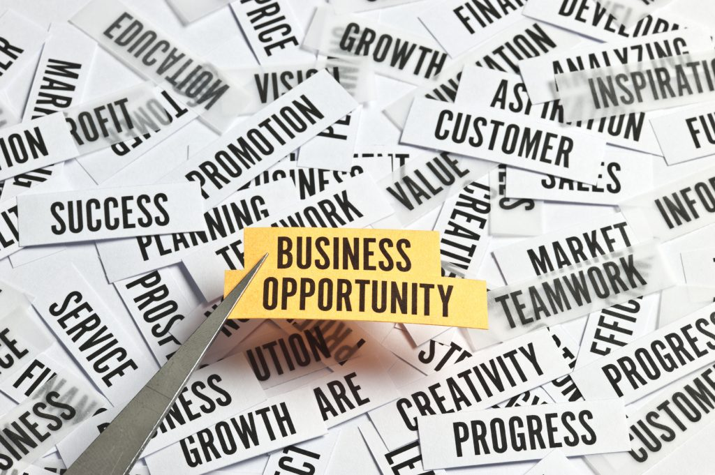Training BUSINESS OPPORTUNITY